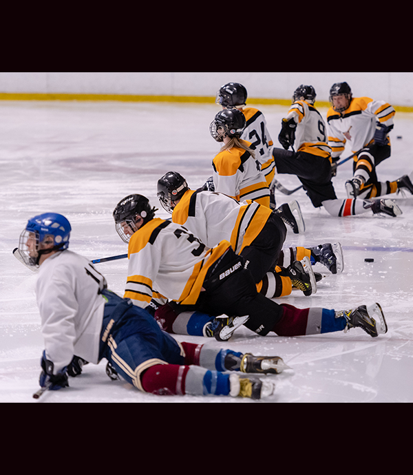 Adult Hockey Skills - Chilled Ponds